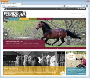 Programmierung Internetportal Pferdemagazin.info